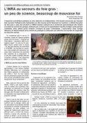 Synthèse de «L'INRA au secours du foie gras»